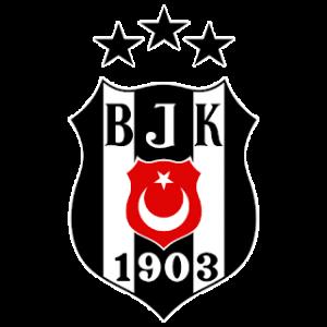 beşiktaş dls logo