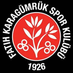 fatih karagümrük dls logo