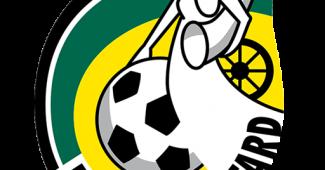 fortuna sittard dls logo