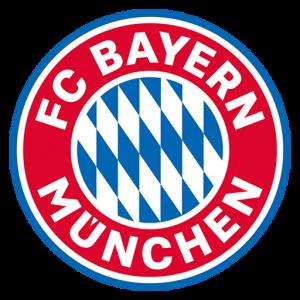 bayern munih dls logo